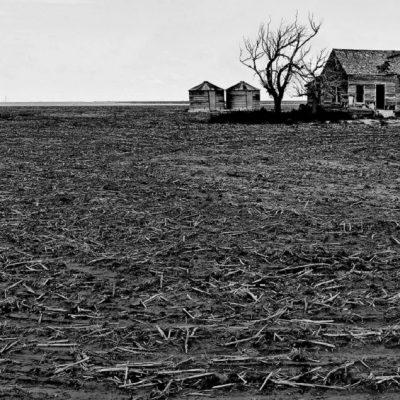 U.S. Farm Bankruptcies Hit New High Under Trump