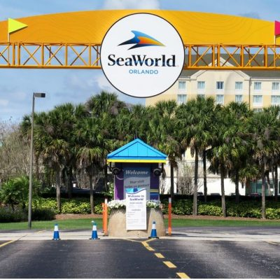 Sea World Park Orlando Is On The Verge Of Having Its First Union